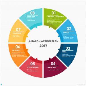 Amazon Action Plan - 2017