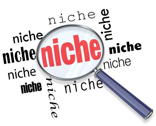 How to find an Amazon niche where you can make profits!