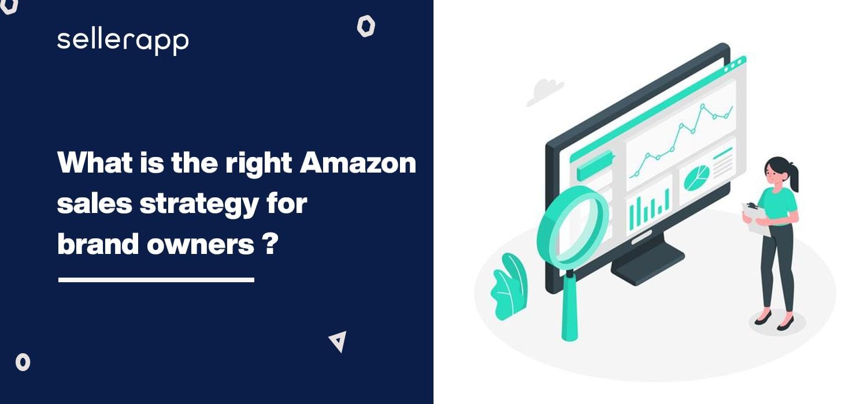amazon sales strategy plan
